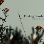 Rachael Wotherspoon Short Film 'Finding Sunshine'
